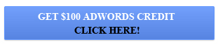 $100 Free Google AdWords Credit!